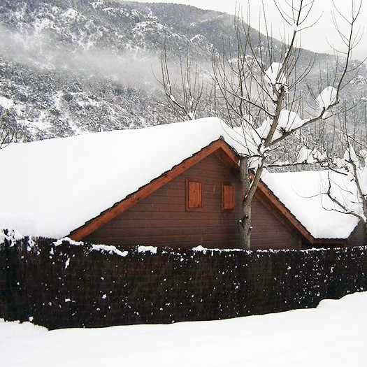Pack bungalow